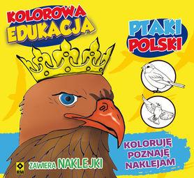 KOLOROWANKA PTAKI POLSKI + NAKLEJKI WYD. RM 2016