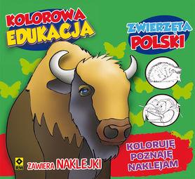 KOLOROWANKA ZWIERZĘTKA POLSKI + NAKLEJKI RM 2016