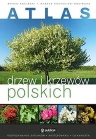 ATLAS DRZEW I KRZEWÓW POLSKICH wydawnictwo PUBLICAT