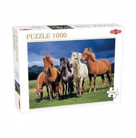 KONIE CAMARGUE   Puzzle 1000 elementów TACTIC