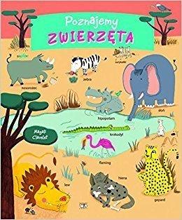 POZNAJEMY ZWIERZĘTA Książeczka edukacyjna dla dzieci w wieku 1-5 lat wyd. DEBIT