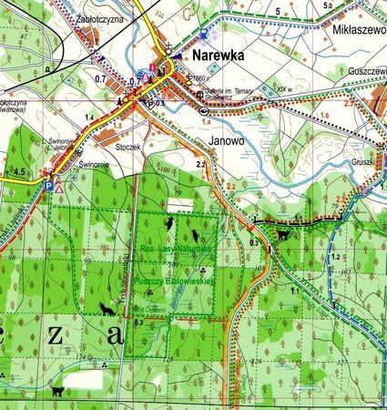 Puszcza Białowieska laminowana mapa turystyczna EXPRESSMAP (4)