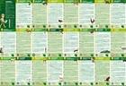 POLSKA PARKI NARODOWE mapa dla dzieci plus MEGA KOLOROWANKA STUDIO PLAN 2020 (2)