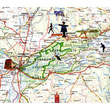 WOJEWÓDZTWO LUBUSKIE mapa 1:200 000 SYGNATURA 2021 (2)