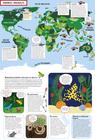 NIEZWYKŁE MAPY Dla miłośników przygód i snów MAMANIA 2021 (2)