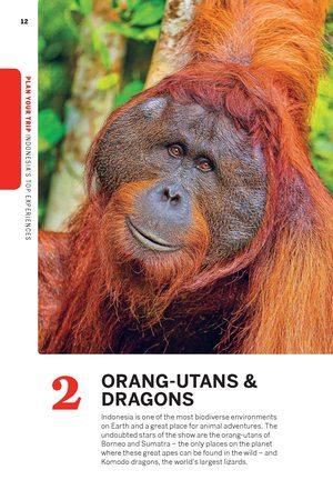INDONEZJA 13 przewodnik LONELY PLANET 2021 (15)